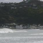 Lyall Bay Surf Club