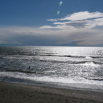 Bracing swim at Paekakariki