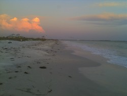 Honeymoon Island photo