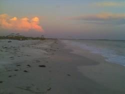 Honeymoon Island photo