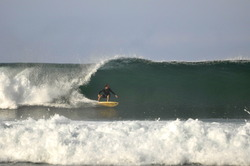 single fining, Punta Conejo photo