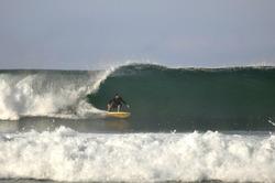 single fining, Punta Conejo photo