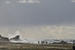 12.12.12, Mavericks photo