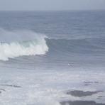 COLOMO, Punta de Lobos