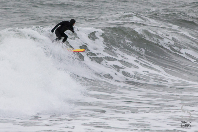 Local Surfer, Ballycotton