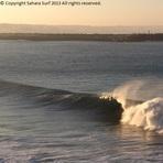 Last swell at Safi on 20/12/12. Peelers! Saharasurf.com, Safi Garden (Le Jardin)