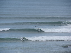 Bird Rocks little brother - summer swell, Sparras photo