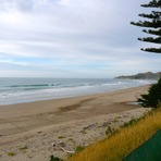 Empty Pines, Wainui Beach (Pines)