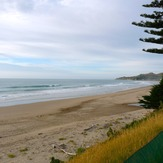Empty Pines, Wainui Beach - Pines