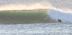 Moffats winter swell, Dickys photo