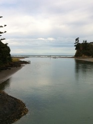 Orewa Beach photo
