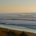 Empty Wave, Wainui Beach - Pines