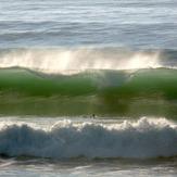 Duck dive, Wainui Beach - Pines