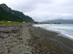 Shoreline, Te Araroa photo