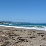 Vast beach, Whangaparaoa