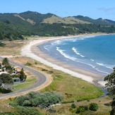 Dribbly shorey, Waihau Bay