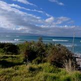 Mahia north coast reefs, Tuahuru Reefs