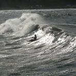 gary korb at Crescent Beach