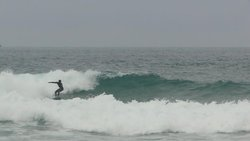 surfe com vento, Praia Mole photo