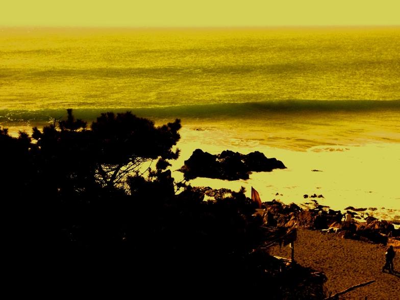 Punta de Lobos