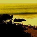 admirando las olas, Punta de Lobos