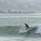 Willie at the Reef, Napier - The Reef
