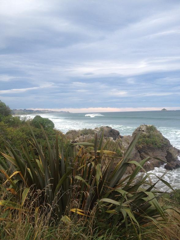 Dunedin - Ocean View