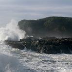 Charleston giant waves