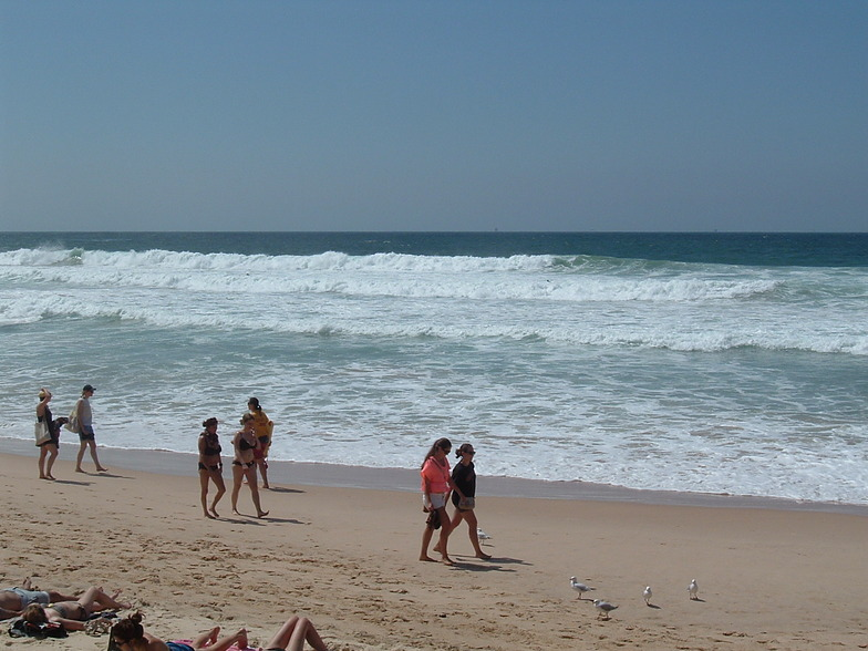 Manly Cyclone Swell