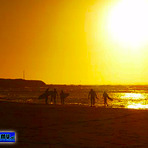 Surfistas en el Atardecer, Pichilemu