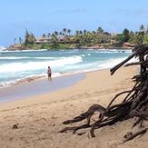 Paia Bay