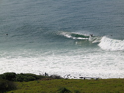 Drainer, Lennox Head photo