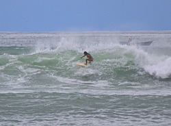 Ripping Up Anclote, El Anclote photo