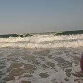 surf meia praia -lagos algarve