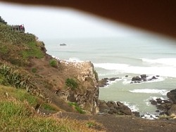 Wave break, Muriwai Beach photo