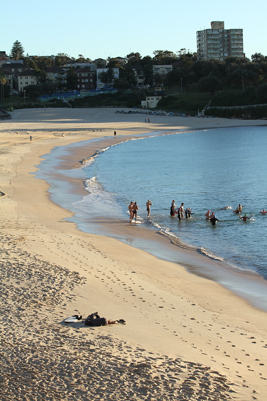 morning dip, Coogee