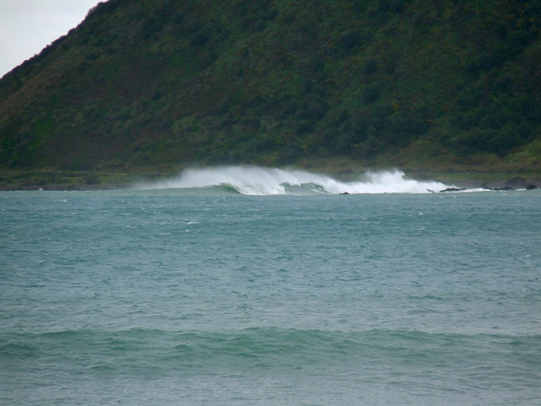 From the Wall, Lyall Bay-Bombora