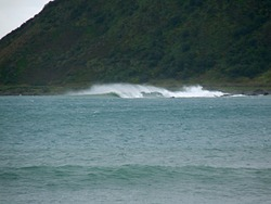 From the Wall, Lyall Bay-Bombora photo