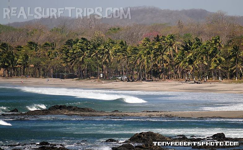 Real Surf Trips