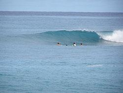 Avana rights photo