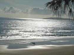 Sunny morning at Rainbow beach, Rainbow Bay photo