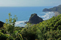 A good Day at Piha, Piha-The Bar photo