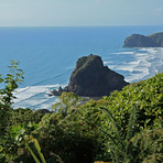 A good Day at Piha, Piha-The Bar