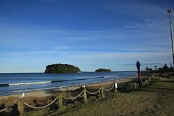 Small Longboard magic, Whangamata Beach photo