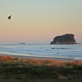 Sunrise light, Mount Maunganui