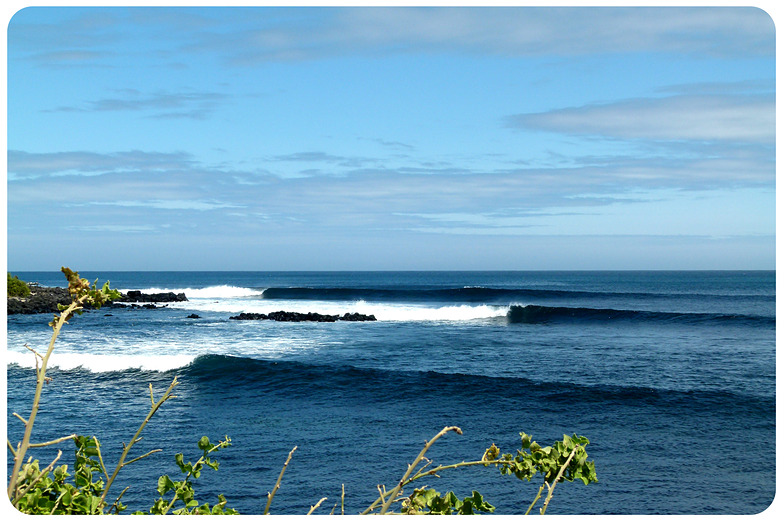 Indonesian Lines-, Tongo Reef