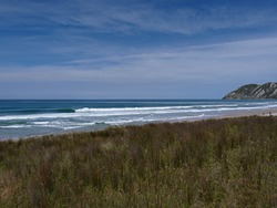 Magical Mahia, Diners Beach photo