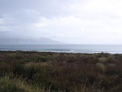 Opoutama Beach photo