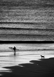 Surfer and Dog, Cowells Cove photo
