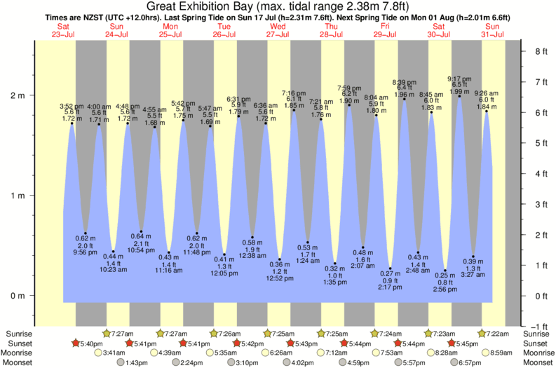 tide graph for Great Exhibition Bay surf break